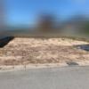 うりぼー家土地の現状1