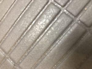 パナソニックのお風呂オフローラの床